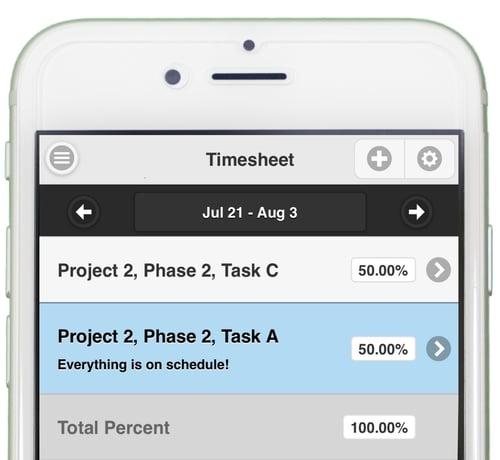 percent-allocation-timesheet
